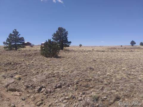 191 Crystal Falls Drive, Westcliffe, CO 81252 (#2612358) :: The DeGrood Team