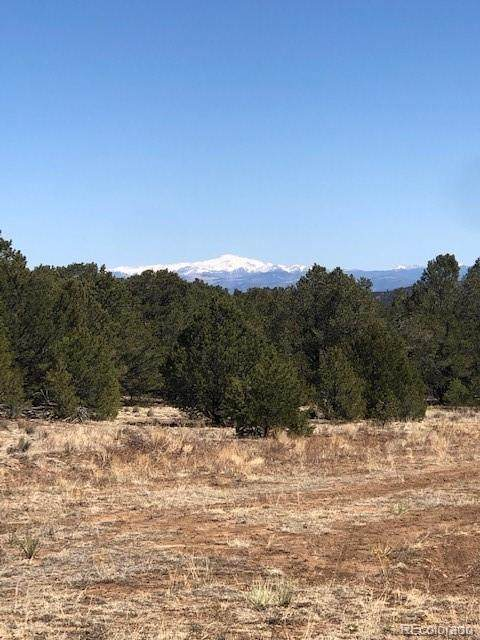 250 Kerrs Hill Circle, Westcliffe, CO 81252 (MLS #2645283) :: 8z Real Estate