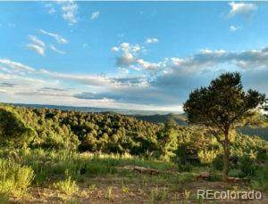 Picketwire Rd, Trinidad, CO 81082 (MLS #2711575) :: Bliss Realty Group