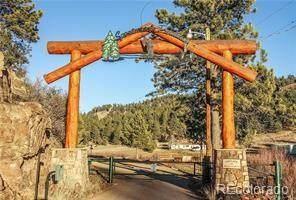 1428 N Crystal Road, Lake George, CO 80827 (#2732092) :: The DeGrood Team