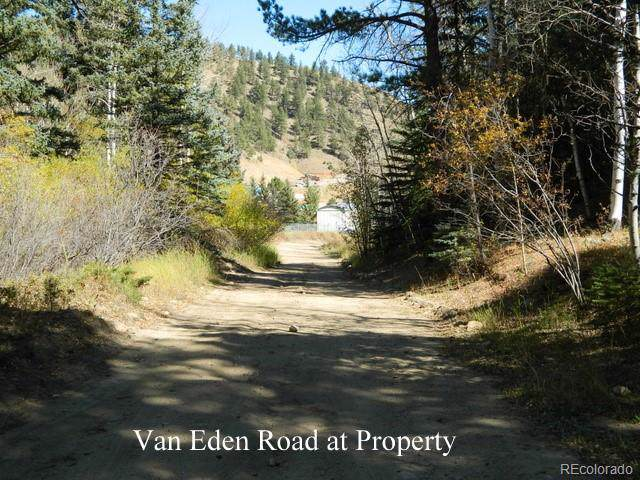 Van Eden Rd-Onterio Mine, Idaho Springs, CO 80452 (MLS #2746931) :: The Sam Biller Home Team