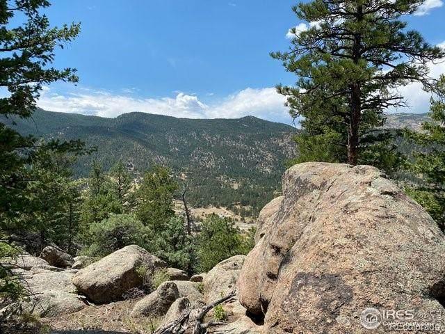 48 Appleby Drive, Lyons, CO 80540 (#2794145) :: iHomes Colorado