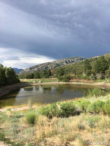 11 Lake Of The Falls Parkway, Mosca, CO 81146 (MLS #2819731) :: Bliss Realty Group
