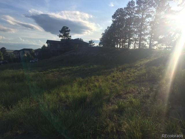 19851 E Crooked Pine Circle, Parker, CO 80134 (#3066712) :: The HomeSmiths Team - Keller Williams