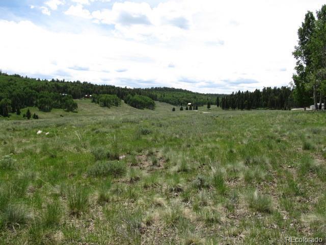 274 Aspen Trail, Cimarron, CO 81220 (#3124632) :: RE/MAX Professionals