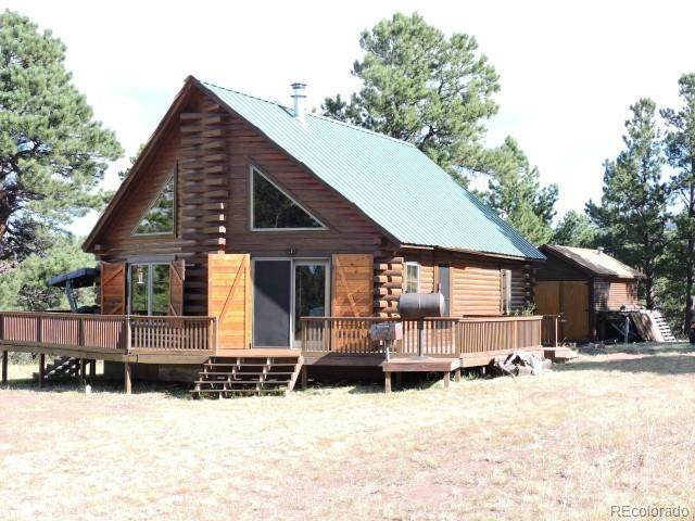 281 Merlo Drive, Fort Garland, CO 81133 (#3156405) :: Own-Sweethome Team