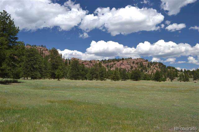 1097 County 111 Road, Florissant, CO 80816 (MLS #3160124) :: 8z Real Estate