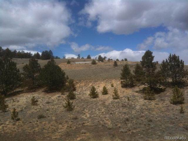 394 Lancelot Lane, Hartsel, CO 80449 (MLS #3169410) :: 8z Real Estate