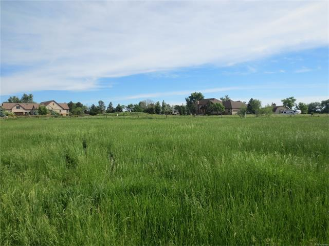 5440 Mcintyre Street, Golden, CO 80403 (MLS #3208567) :: 8z Real Estate