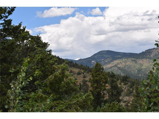 9 Clear Creek Road, Evergreen, CO 80439 (MLS #3233522) :: 8z Real Estate