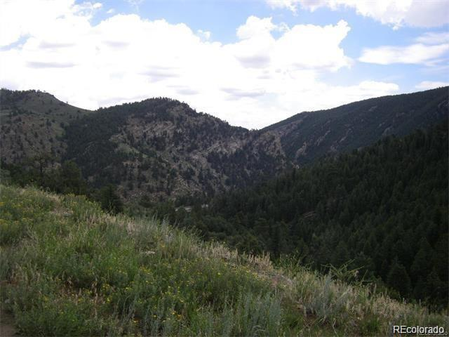 0 Elk Valley Drive, Evergreen, CO 80439 (#3334206) :: The City and Mountains Group