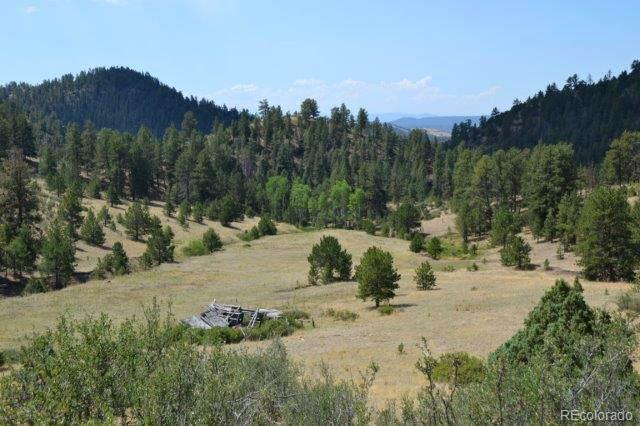 Tbd Secluded Canyon Heights, Florissant, CO 80816 (MLS #3401374) :: 8z Real Estate