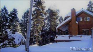 1615 Clarke Mountain Lane, Antonito, CO 81120 (#3405493) :: The DeGrood Team