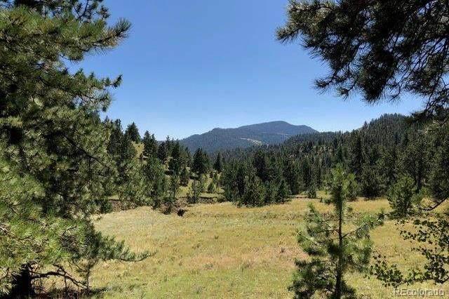845 County 102 Road, Guffey, CO 80820 (#3409419) :: HergGroup Denver