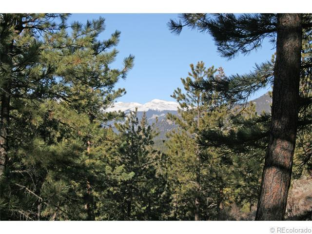 30863 Upper Bear Creek Road, Evergreen, CO 80439 (#3428616) :: Thrive Real Estate Group