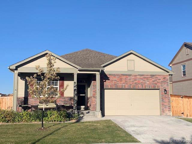 13654 Spruce Street, Thornton, CO 80602 (#3432307) :: James Crocker Team