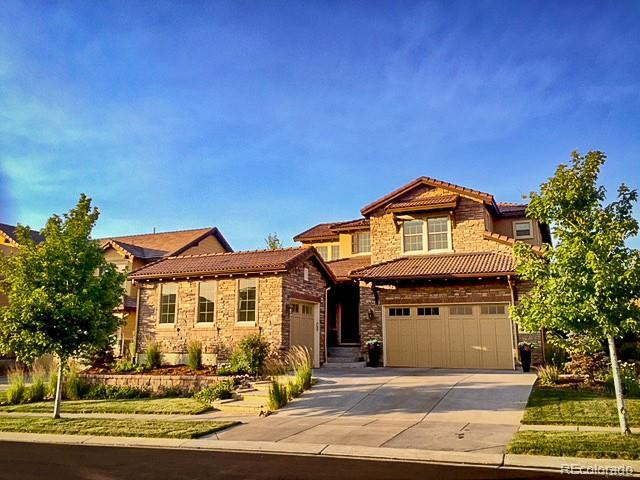 10654 Sundial Rim Road, Highlands Ranch, CO 80126 (#3480725) :: The Griffith Home Team