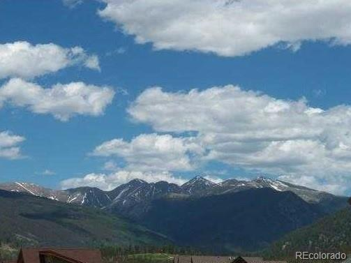 63 Telluride Court, Dillon, CO 80435 (#3485529) :: Colorado Home Finder Realty