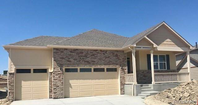 5896 Plains End Court, Castle Rock, CO 80104 (#3489654) :: The DeGrood Team