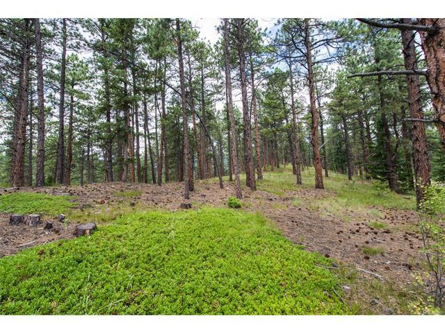 0000 Ruby Ranch Road, Evergreen, CO 80439 (MLS #3490862) :: 8z Real Estate