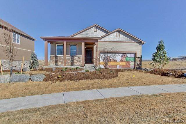 6255 N Gibralter Court, Aurora, CO 80019 (MLS #3538410) :: 8z Real Estate