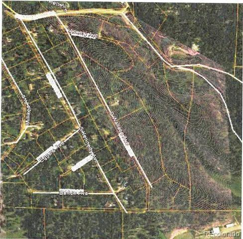 Lot 8X Wallace Avenue, Conifer, CO 80433 (#3539132) :: The HomeSmiths Team - Keller Williams