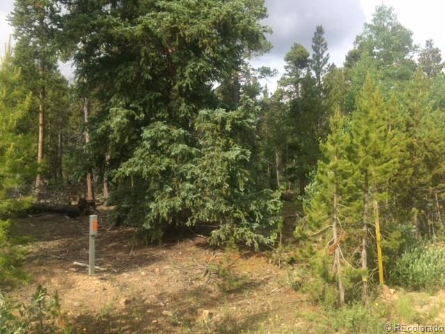 1012 Circle 73 Drive, Fairplay, CO 80440 (MLS #3620271) :: 8z Real Estate