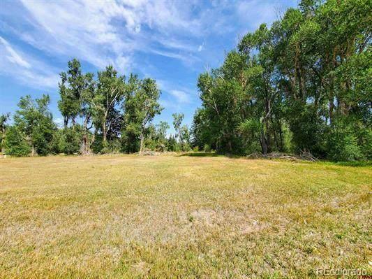 20 E Riverside Court, South Fork, CO 81154 (MLS #3675536) :: Wheelhouse Realty