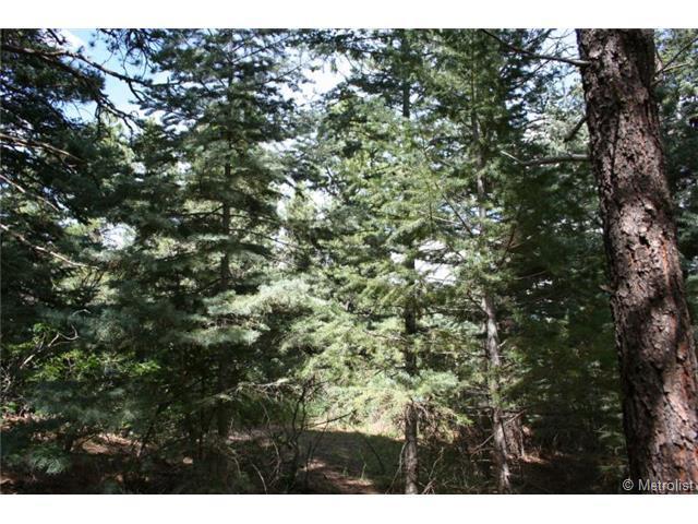 Arnold Lane, Rye, CO 81069 (MLS #3771559) :: 8z Real Estate