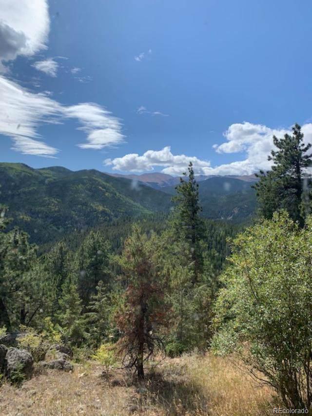 1233 County Road 118, Idaho Springs, CO 80452 (#3797170) :: The DeGrood Team