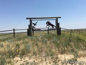 0000 County Road 178 & 53 Lot 10, Kiowa, CO 80117 (#3858010) :: James Crocker Team