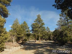 13 Costilla Boulevard, Mosca, CO 81101 (#3940354) :: Structure CO Group
