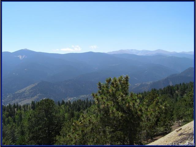Miner Candle Road, Idaho Springs, CO 80452 (MLS #3945759) :: 8z Real Estate