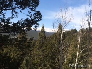 Forest Drive, Bailey, CO 80421 (#4193180) :: The DeGrood Team