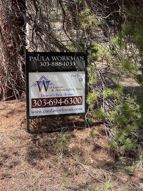216 Hard Way Road, Ward, CO 80481 (MLS #4199822) :: Find Colorado