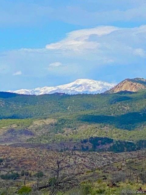 000 Cr 15X, Cotopaxi, CO 81223 (MLS #4241966) :: Bliss Realty Group