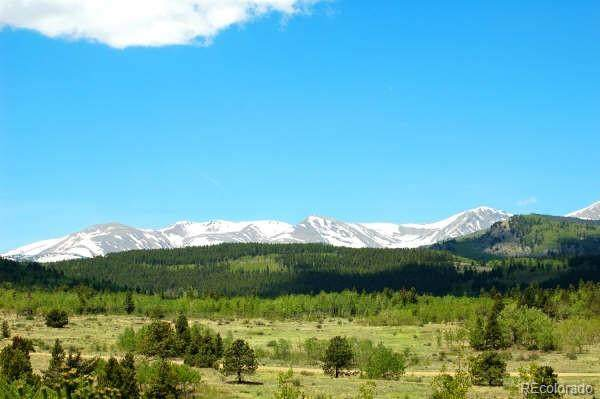 Parcel 21 A Bald Mountain Road, Central City, CO 80427 (#4362835) :: The DeGrood Team