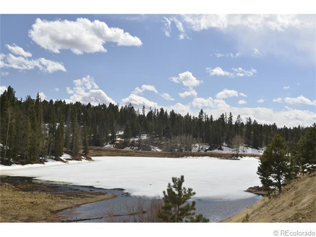 104 Pinewood Road, Florissant, CO 80816 (MLS #4363849) :: 8z Real Estate
