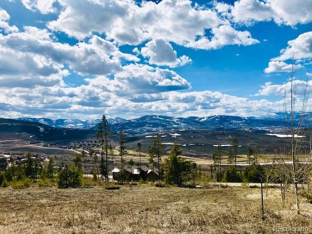 480 Pawnee Lane, Granby, CO 80446 (MLS #4386811) :: 8z Real Estate