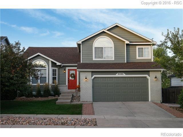 6065 Wheatgrass Drive, Colorado Springs, CO 80923 (#4423382) :: Wisdom Real Estate