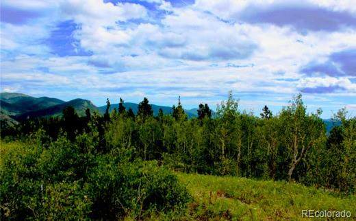002 Mosquito Creek Road, Central City, CO 80422 (MLS #4443219) :: Find Colorado