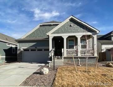 15560 Xanthia Court, Thornton, CO 80602 (MLS #4456963) :: 8z Real Estate