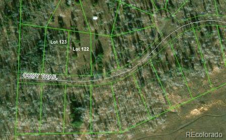 Cody Trail, Oak Creek, CO 80467 (MLS #4491113) :: 8z Real Estate