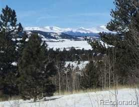 Co Road 23, Hartsel, CO 80449 (#4493698) :: Structure CO Group