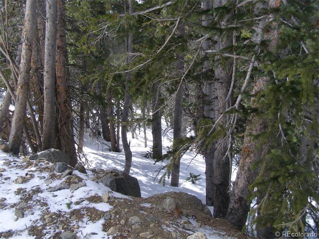 Lot 73 Mine Road, Idaho Springs, CO 80452 (MLS #4520014) :: 8z Real Estate
