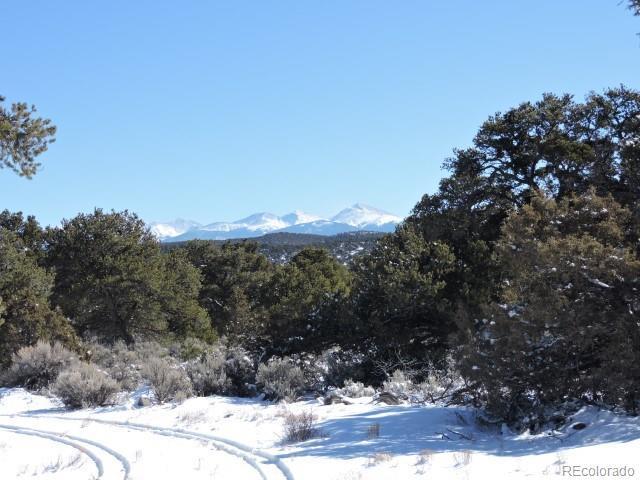 3454 Elk Park Road, San Luis, CO 81152 (#4530131) :: The DeGrood Team