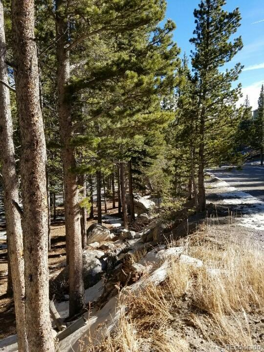 134 Elk Road, Idaho Springs, CO 80452 (#4538475) :: Structure CO Group
