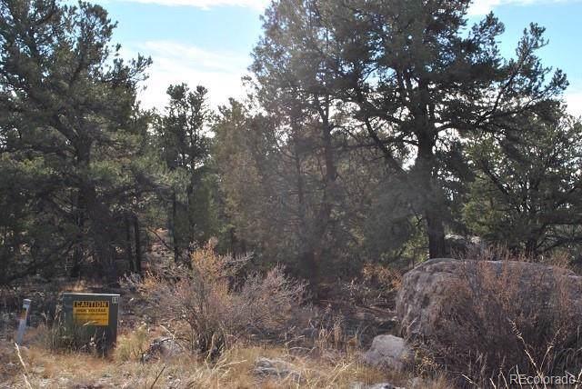 2181 Spanish Creek Road, Crestone, CO 81131 (#4547995) :: The Margolis Team