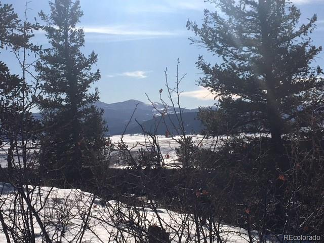 Middle Fork Vista, Fairplay, CO 80440 (#4553985) :: The Peak Properties Group