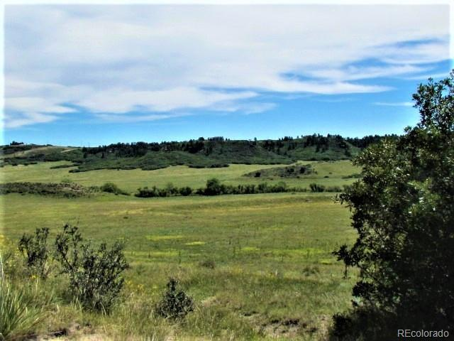 3240 Ditmars Lane, Castle Rock, CO 80104 (#4562130) :: Wisdom Real Estate